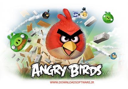 Angry Birds v1.6.2 دانلود بازی پرندگان خشمگین برای کامپیوتر Angry Birds v1.6.2