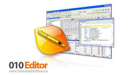 SweetScape-010-Editor