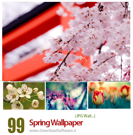 دانلود مجموعه تصاویر والپیپر با موضوع بهار - Spring Wallpaper