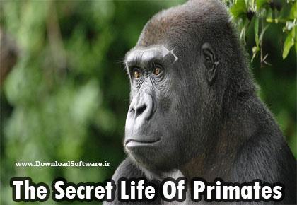 دانلود فصل اول مستند ۲۰۰۹ The Secret Life Of Primates