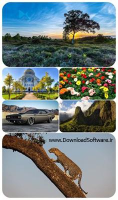 دانلود 62 تصویر والپیپر ترکیبی و زیبا