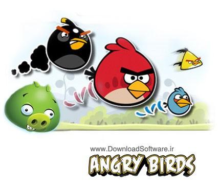 دانلود بازی جذاب Angry Birds 2011 برای کامپیوتر