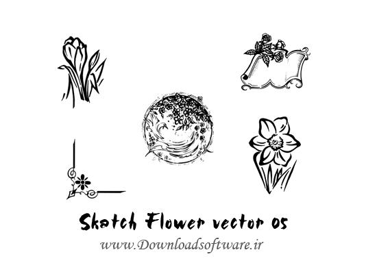 دانلود وکتورهای طرح گل Skatch Flower vector 05
