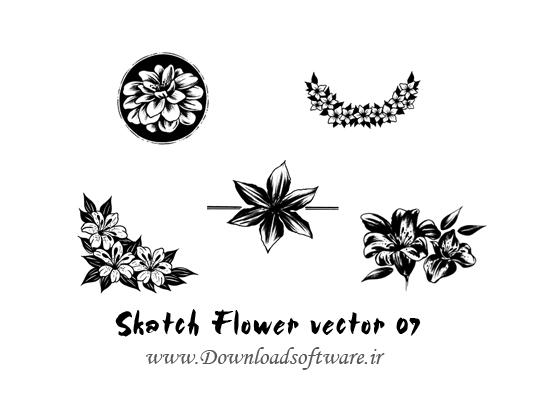 دانلود وکتورهای طرح گل Skatch Flower vector 07
