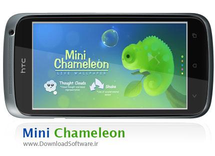 Mini-Chameleon