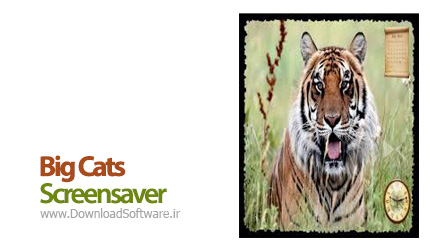Big-Cats-Screensaver