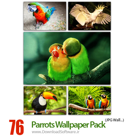 Parrots-Wallpaper-Pack