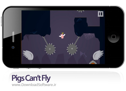 Pigs-Can't-Fly