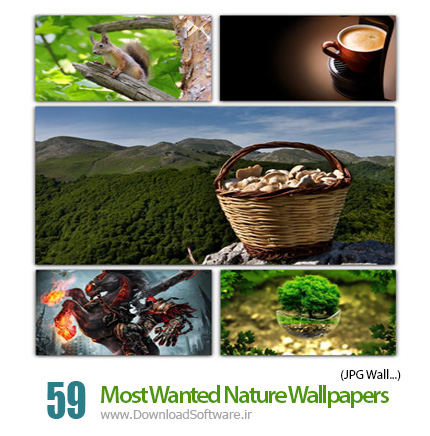 Most-Wanted-Nature-Wallpapers