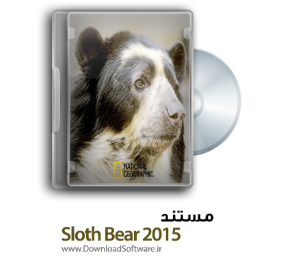 Sloth-Bear-2015