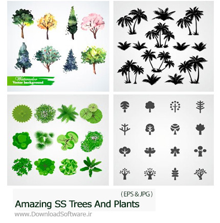 Amazing-ShutterStock-Trees-And-Plants