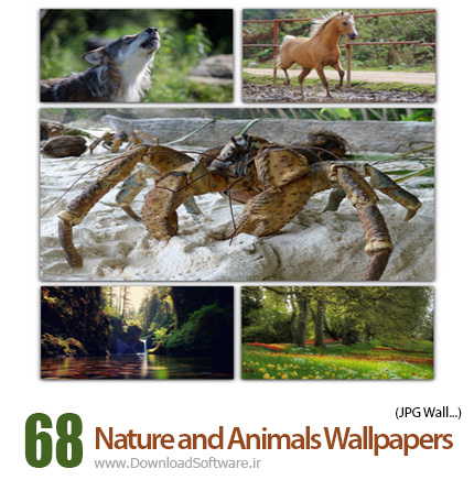 68-Nature-and-Animals-Cover