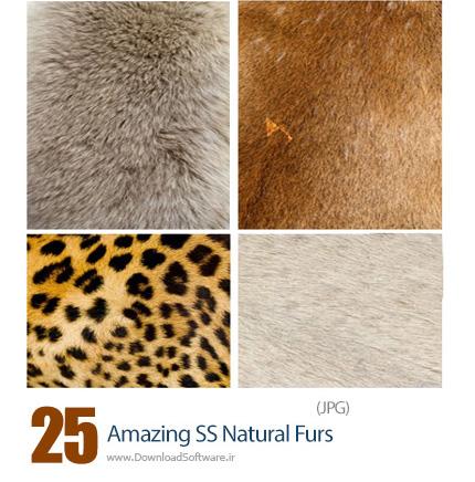 دانلود تصاویر با کیفیت خز طبیعی از شاتر استوک - Amazing ShutterStock Natural Furs