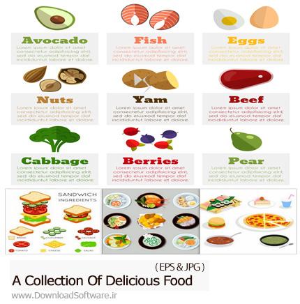 دانلود مجموعه تصاویر وکتور غذا و مواد غذایی تازه و خوشمزه - A Collection Of Delicious Food
