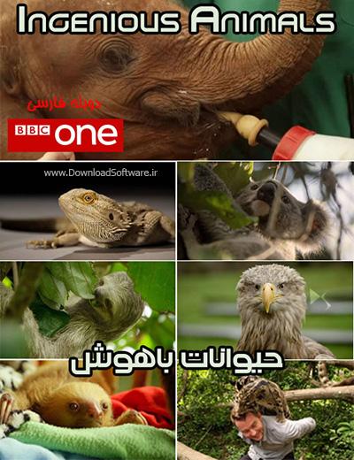 دانلود دوبله فارسی مستند حیوانات باهوش Ingenious Animals 2016