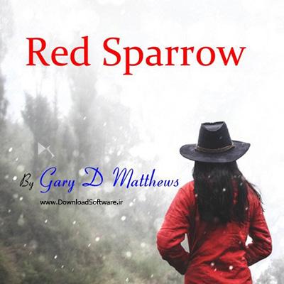 دانلود آلبوم موسیقی جذاب Gary D Matthews – Red Sparrow 2019