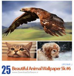 دانلود 25 تصویر زیبا و جذاب از حیوانات مختلف
